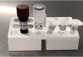 2019-Novel Coronavirus (2019-nCoV) RT-PCR Detection Kit